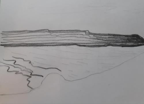Recolección - Permanencia y territorioLápiz sobre papel 18x25cm