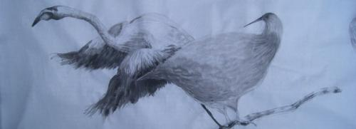 Detalle Aves- Tinta sobre papel de arroz