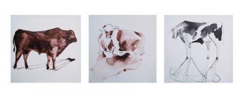 TOROS - Tríptico - Tinta sobre tela - 40x40cm